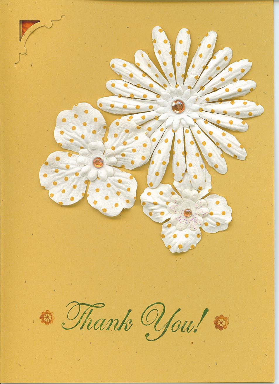 Greeting Card Special Thank You Anthony Aquan Assee Med Bed