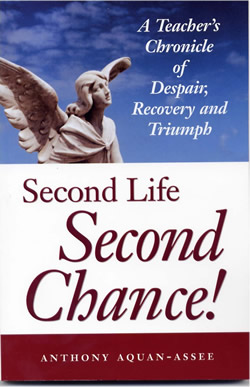 book-second-life-second-chance