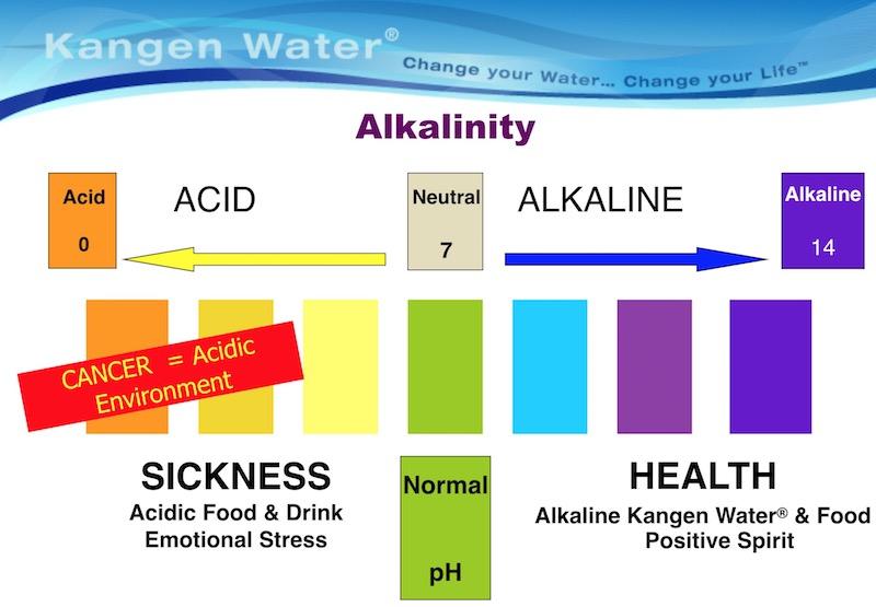 """""""Alkalinity"""""""